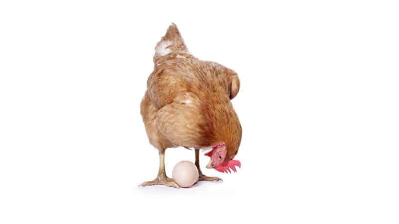 Industrie 4.0: ein Henne-Ei-Phänomen – wie geht man damit um?